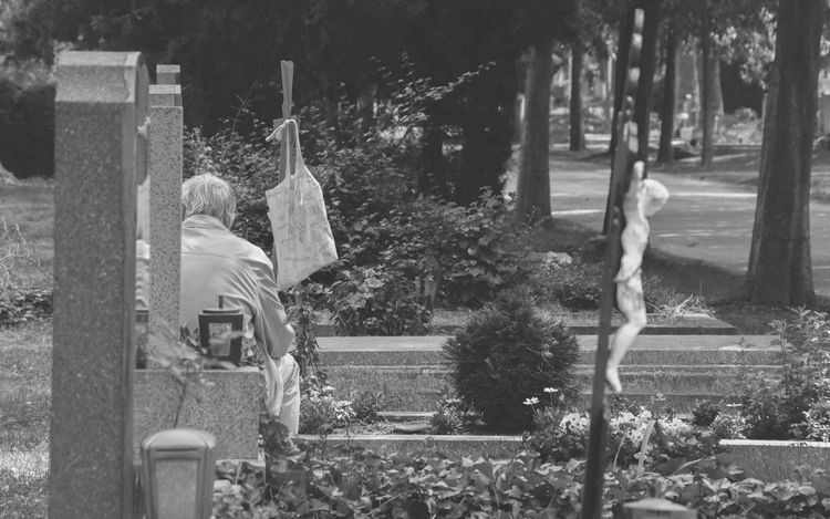 Black And White Cemetary Cemetary Shots Eyeem Black And White Left Behind The Leftovers Zentralfriedhof Showcase June My Year My View