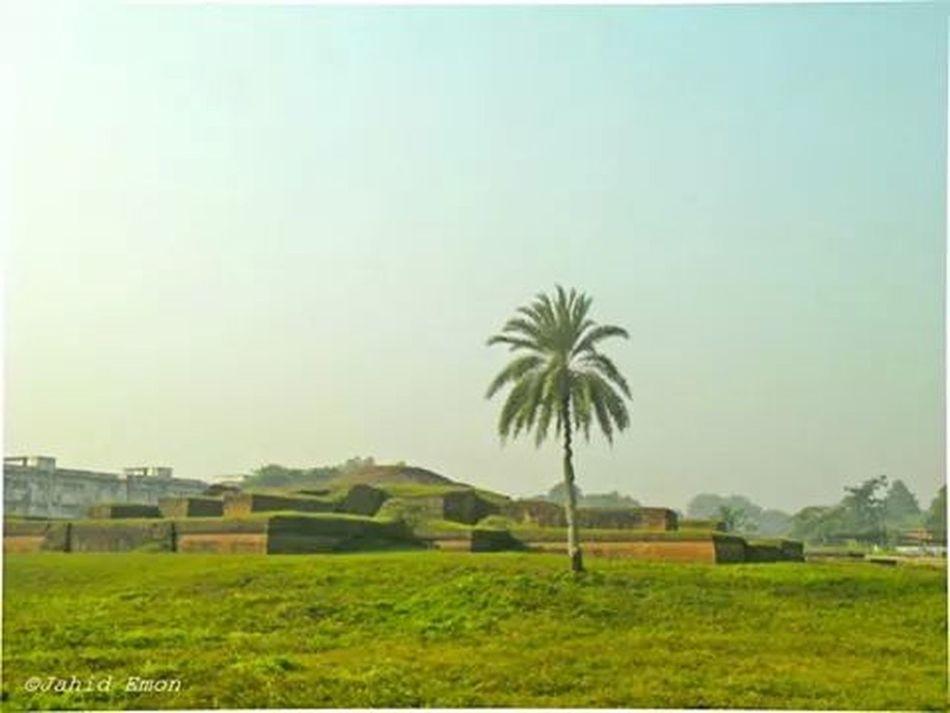 niceBangladesh