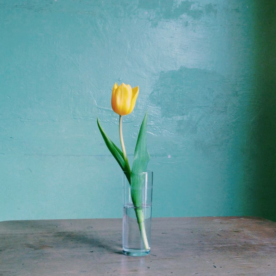 Beautiful stock photos of easter, Berlin, Blue, Decoration, Fragility