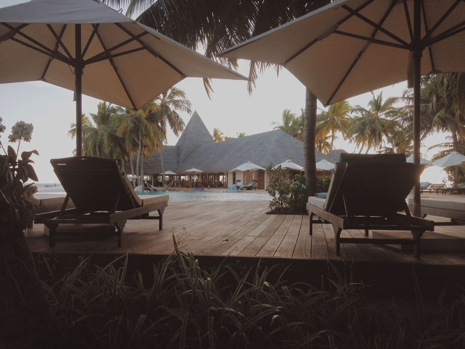 Hotel Pool Bestoftheday Travel Maldives Lifestyles Everyday Joy