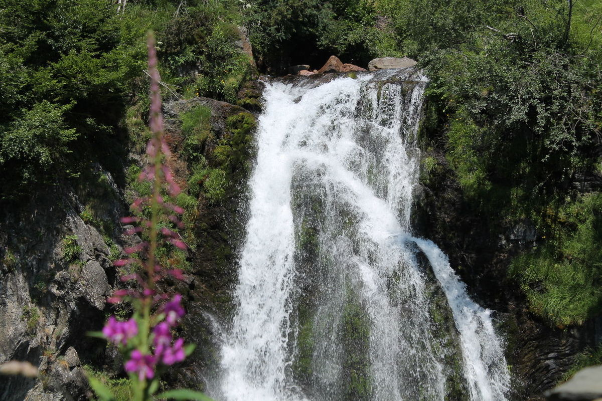 saut deth pish Beauty In Nature Day Flowing Flowing Water Forest Green Color Idyllic Lleida Lush Foliage Motion Nature No Filter, No Edit, Just Photography Non-urban Scene Rock - Object Tranquil Scene Tranquility Water Waterfall