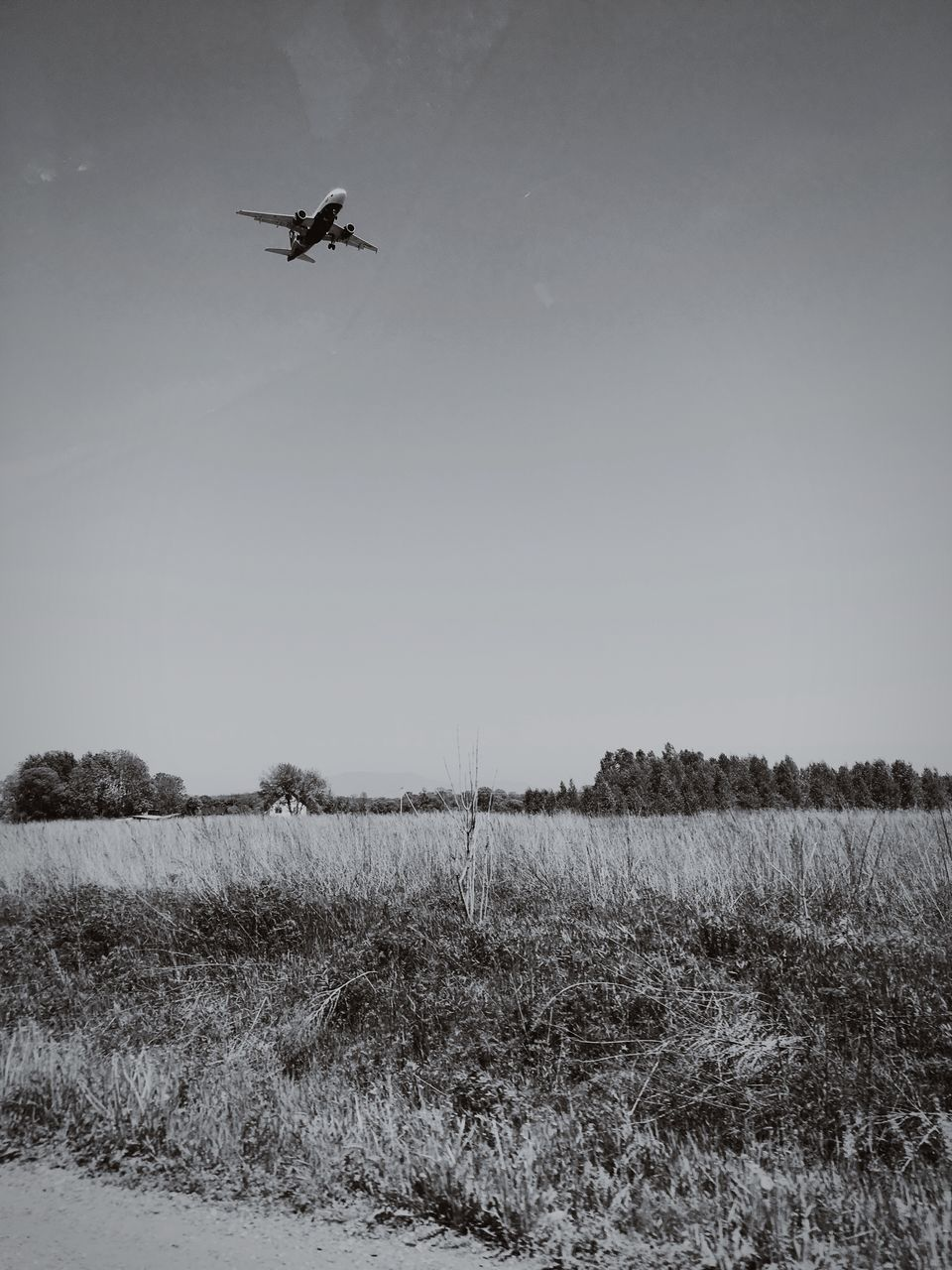Airplane Flying Over Landscape