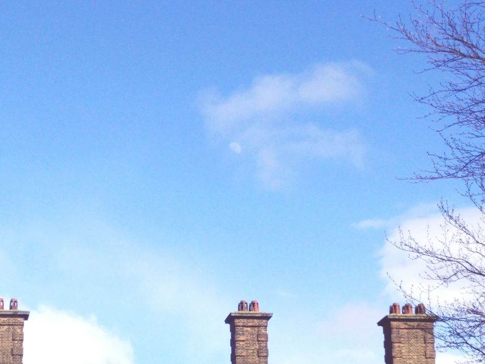 Pictureoftheweek Chimney Chimneys Chimney Tops Trees Tree And Sky Tree Branches Tree Branch  Branch Branches Branches And Sky Clouds And Sky Cloud Clouds Cloud - Sky Moon Sky Sky And Clouds Inside