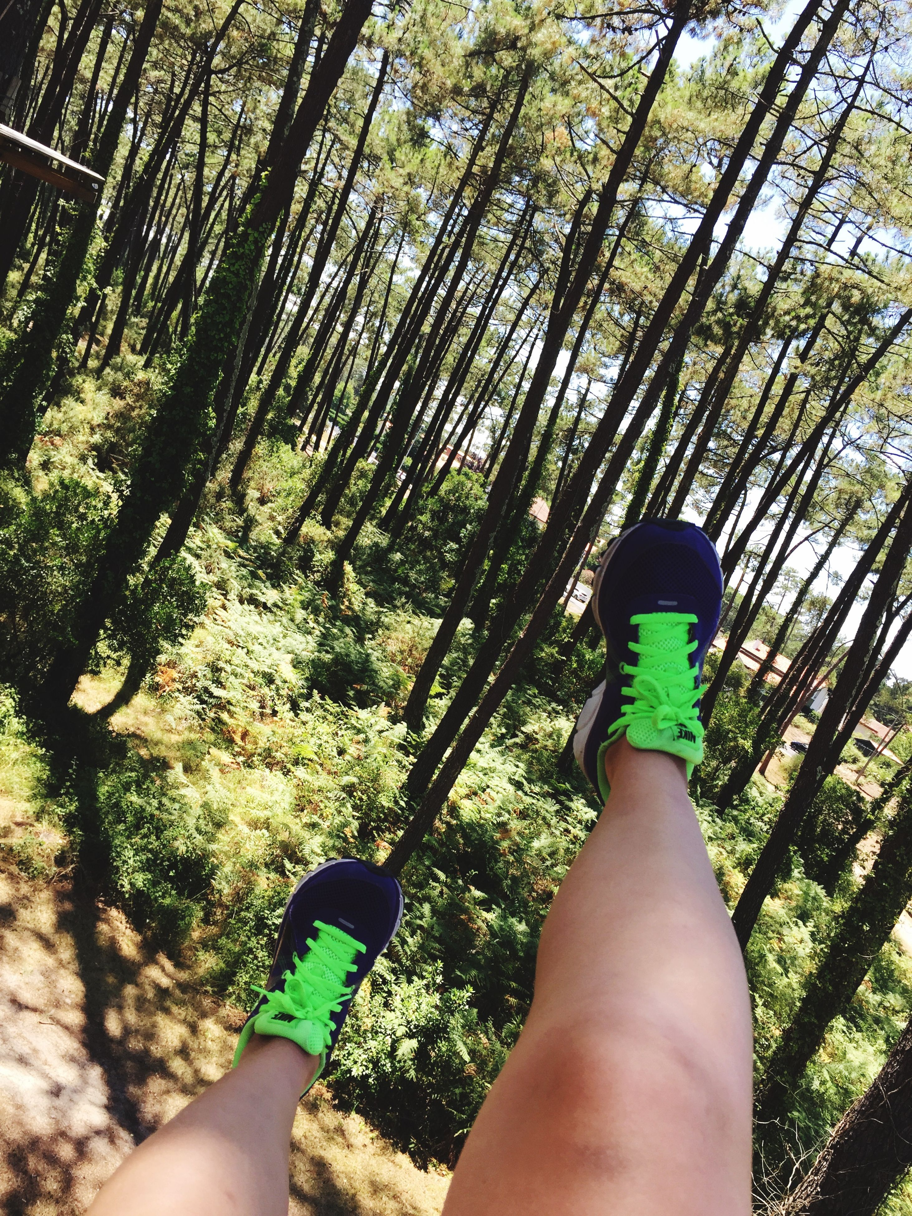 personal perspective, low section, person, tree, lifestyles, leisure activity, part of, human foot, unrecognizable person, barefoot, forest, growth, men, day, nature
