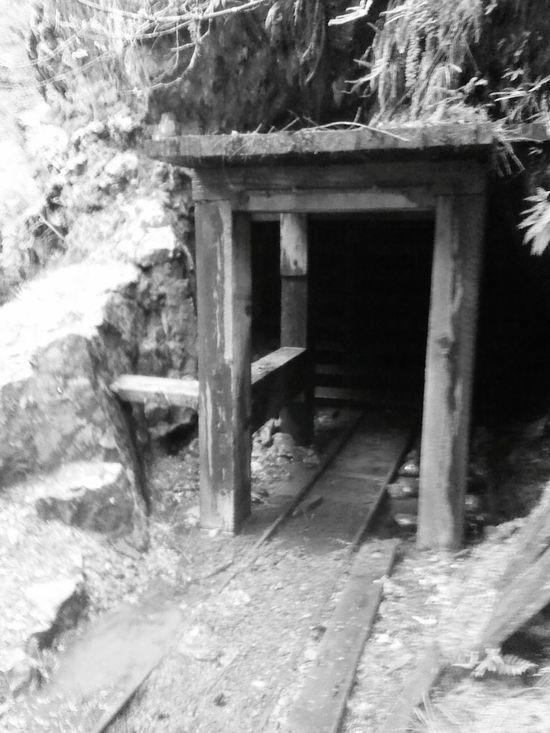 Mine History GOLD RUSH Opal Mining Mining Heritage Old Black & White