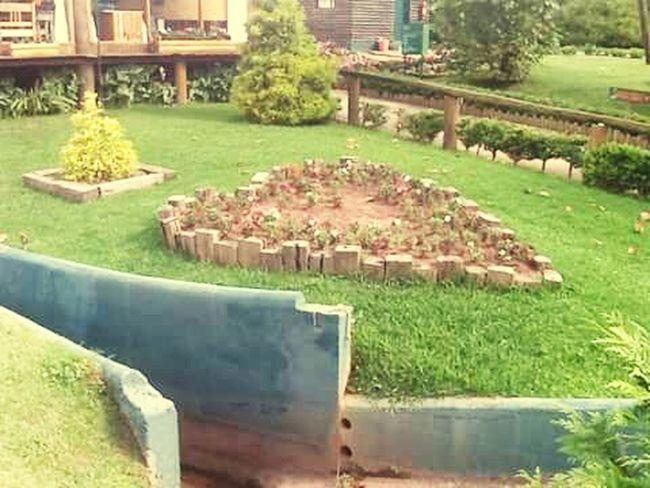 Camposdojordao Verde Flores Jardim Coração