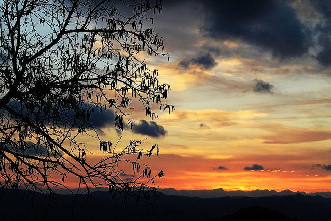 Beauty In Nature Cloud - Sky Landscape Nature Scenics Silhouette Sunset Sunset #sun #clouds #skylovers #sky #nature #beautifulinnature #naturalbeauty #photography #landscape Sunset #sun #clouds #skylovers #sky #nature #beautifulinnature #naturalbeauty Photography Landscape [ Sunset #sun #clouds #skylovers #skyporn #sky #beautiful #sunset #clouds And Sky #beach #sun _collection #sunst And Clouds Sunset And Clouds  Sunset Lovers Sunset Porn Sunset Silhouettes Sunset_captures Sunset_collection Sunsetlover Sunsetphotographs Sunsetporn Sunsets Tranquil Scene Tranquility
