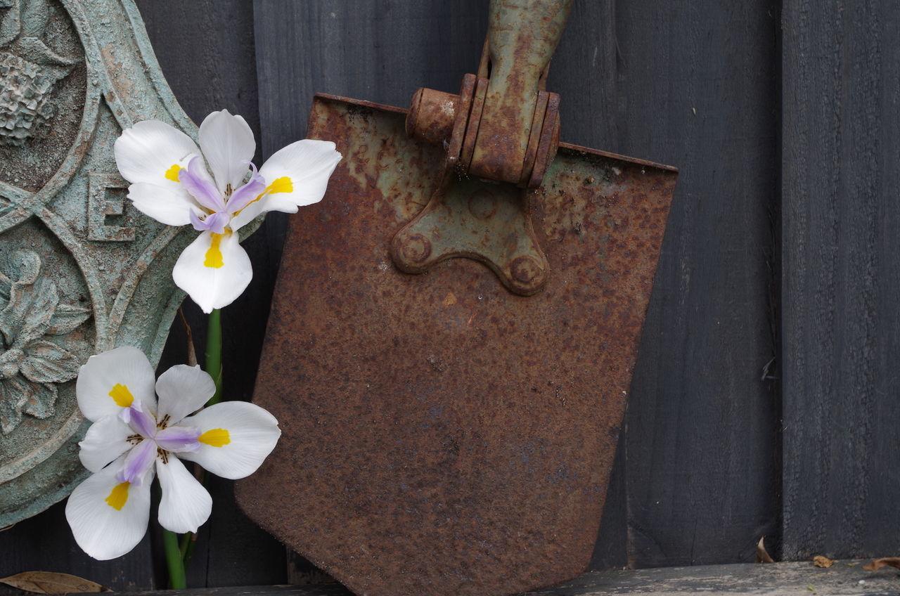 Flowers On Floral Pattern Of Metal