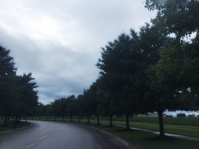Aurora, Illinois Found On The Roll Drizzling Drizzle Daylight Day Day Photography Tree_collection  TreePorn Long Road Sky And Clouds Cloudy Sky Curvy Road My Favorite Place