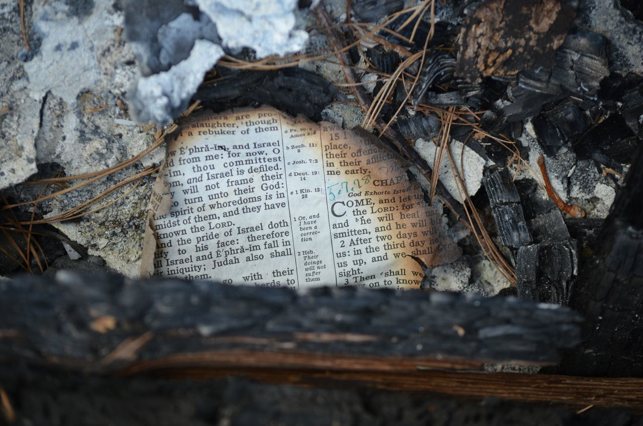Beautiful stock photos of bible, Abandoned, Burnt, Close-Up, Communication