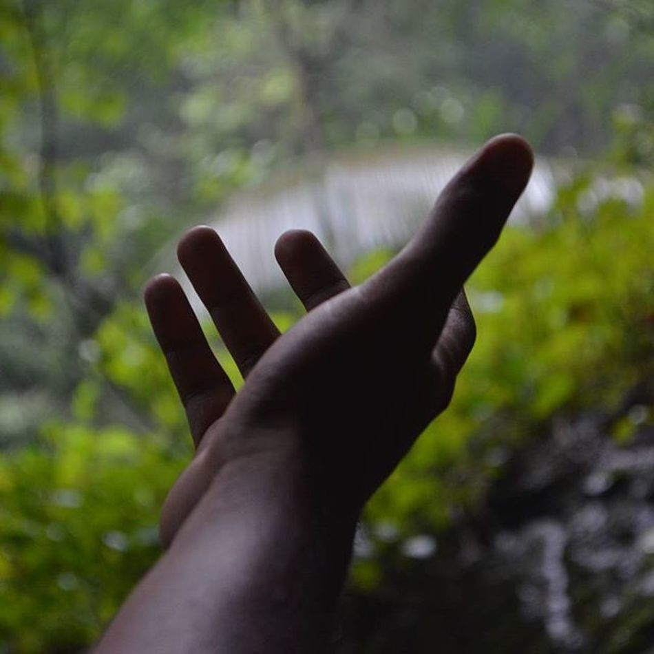 An explicit reach out to mother nature Foresttrek RainyDay Adaywithnature Nofilter