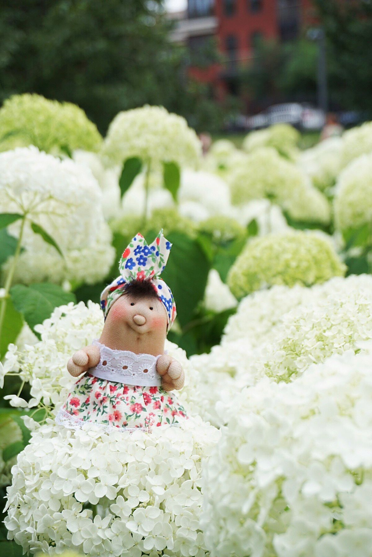 Crown Laurel Wreath One Person Wreath Portrait Flower People Close-up Freshness Queen - Royal Person Outdoors Adults Only Adult Day Grandma-Nina Naturelovers Nature Beauty Nature Porn Flowerporn Flower Head Nature