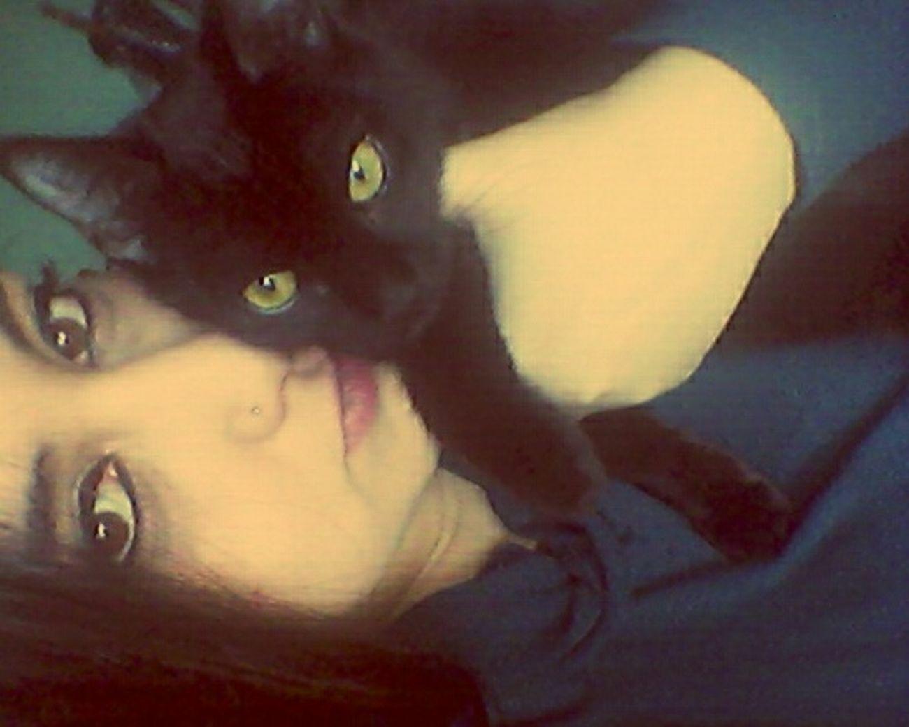 Te extraño u.u Cat♡ Cat Lovers Gatito BLackCat Eyes Green Eyes Gatito Negro Gatto Gattonero Ilovemycat Teextraño
