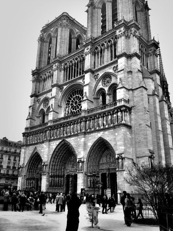 black and white at Cathédrale Notre-Dame de Paris by Gldrk
