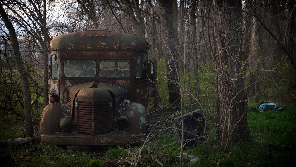 Bullet Holes Abandoned Places Bullit Holes Damaged Deterioration Nature Non-urban Scene Obsolete Tree Trunk