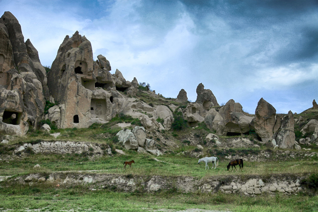Beauty In Nature Cappadocia Cloud Cloud - Sky Day Grass Horses Landscape Landscape_Collection Lanscape Photography Mammal Mountain Nature Nature Non-urban Scene Outdoors Rock Rock - Object Rock Formation Scenics Sky Sky And Clouds Ayse Yorgancilar Turkey Cappadocia