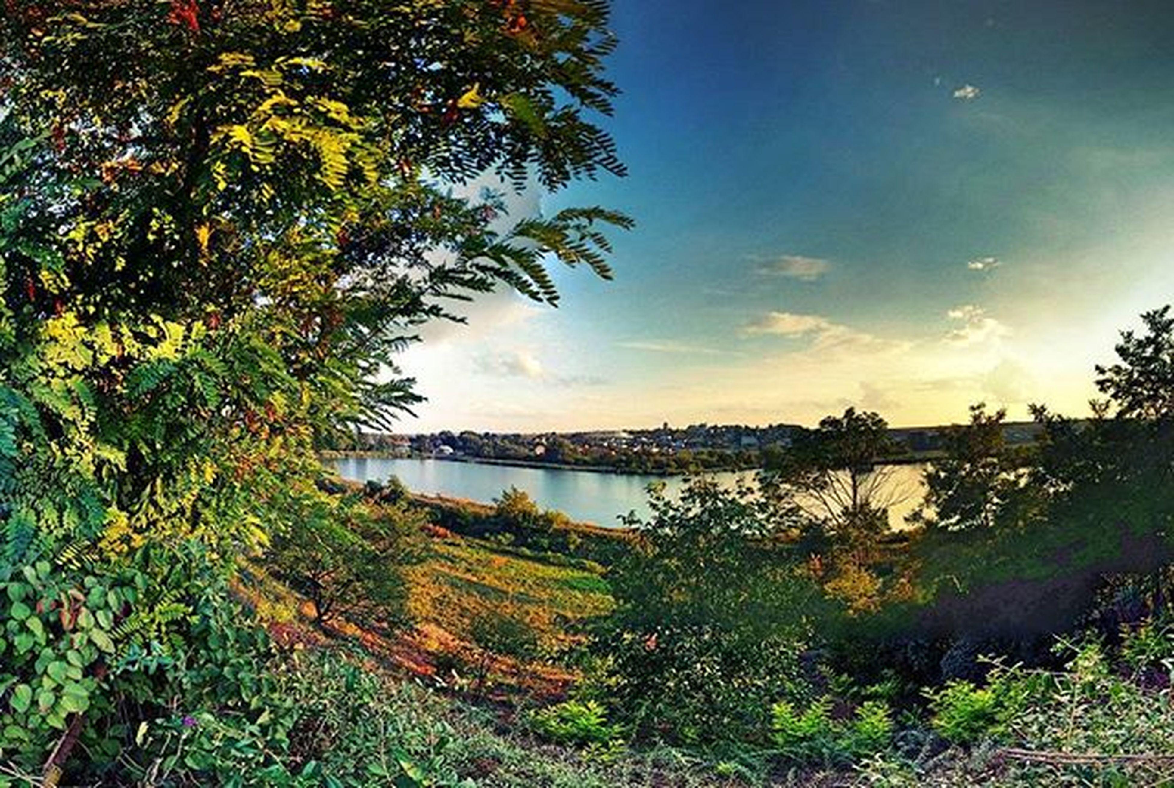 Підволочиське озеро)) озеро Lake підволочиськ Beautiful Bestoftheday TBT  Amazing Nature Природа прогулка Fotorapp