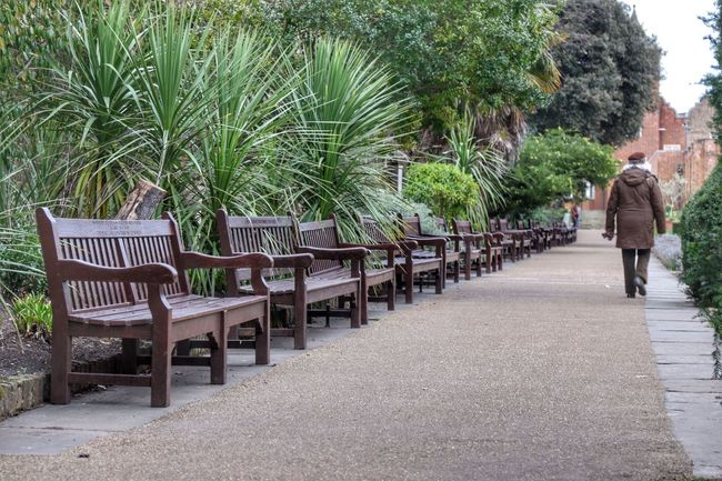 Matching Colors Eye4photography  Holland Park, London Bench Benches People Outdoor Photography Canon 7D MarkII Check This Out Canon 24-70 Park Brown Pastel Colors Pastel Great Outdoors Pmg_lon