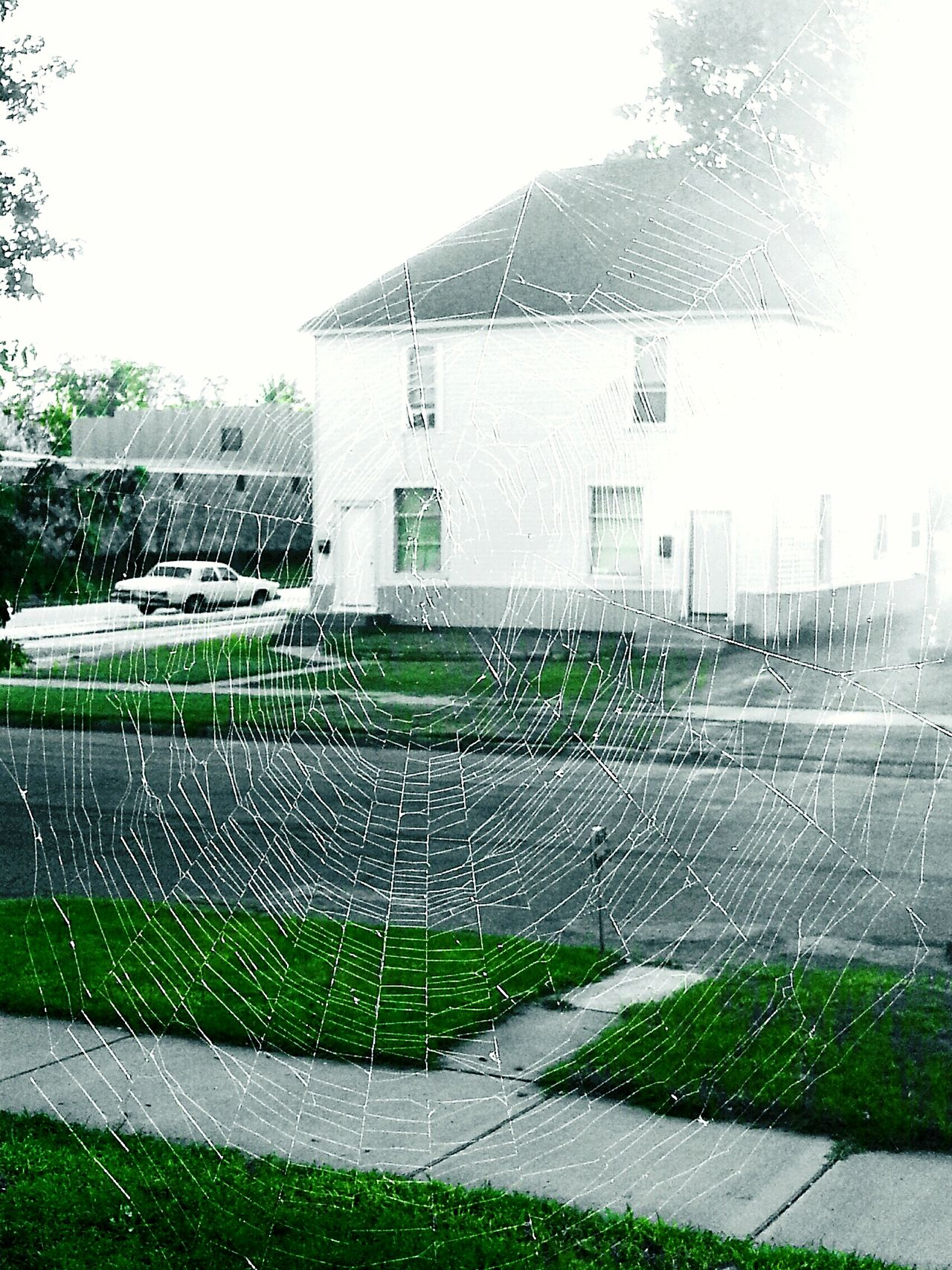 Beautiful stock photos of spinnen,  Building Exterior,  Built Structure,  Day,  Fragility