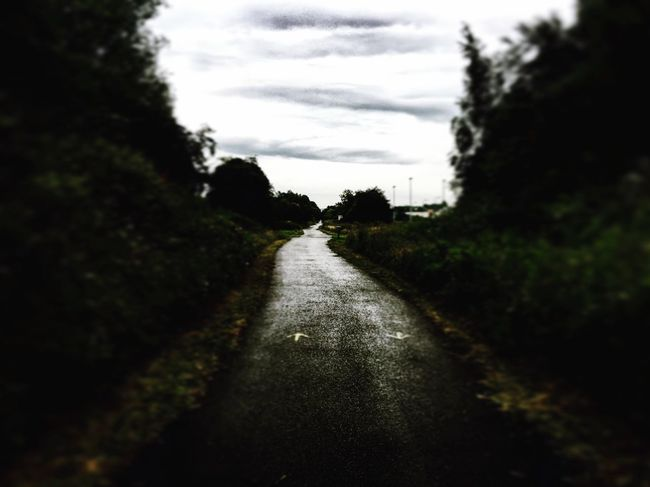 The lonesome road Sky The Way Forward Tree Transportation Road Tranquil Scene Street Tranquility Diminishing Perspective Cloud Cloud - Sky Nature Non-urban Scene Cloudy Long Day Growth Vanishing Point Outdoors Remote Apple IPhone IPhoneography Iphonesia Iphone6s