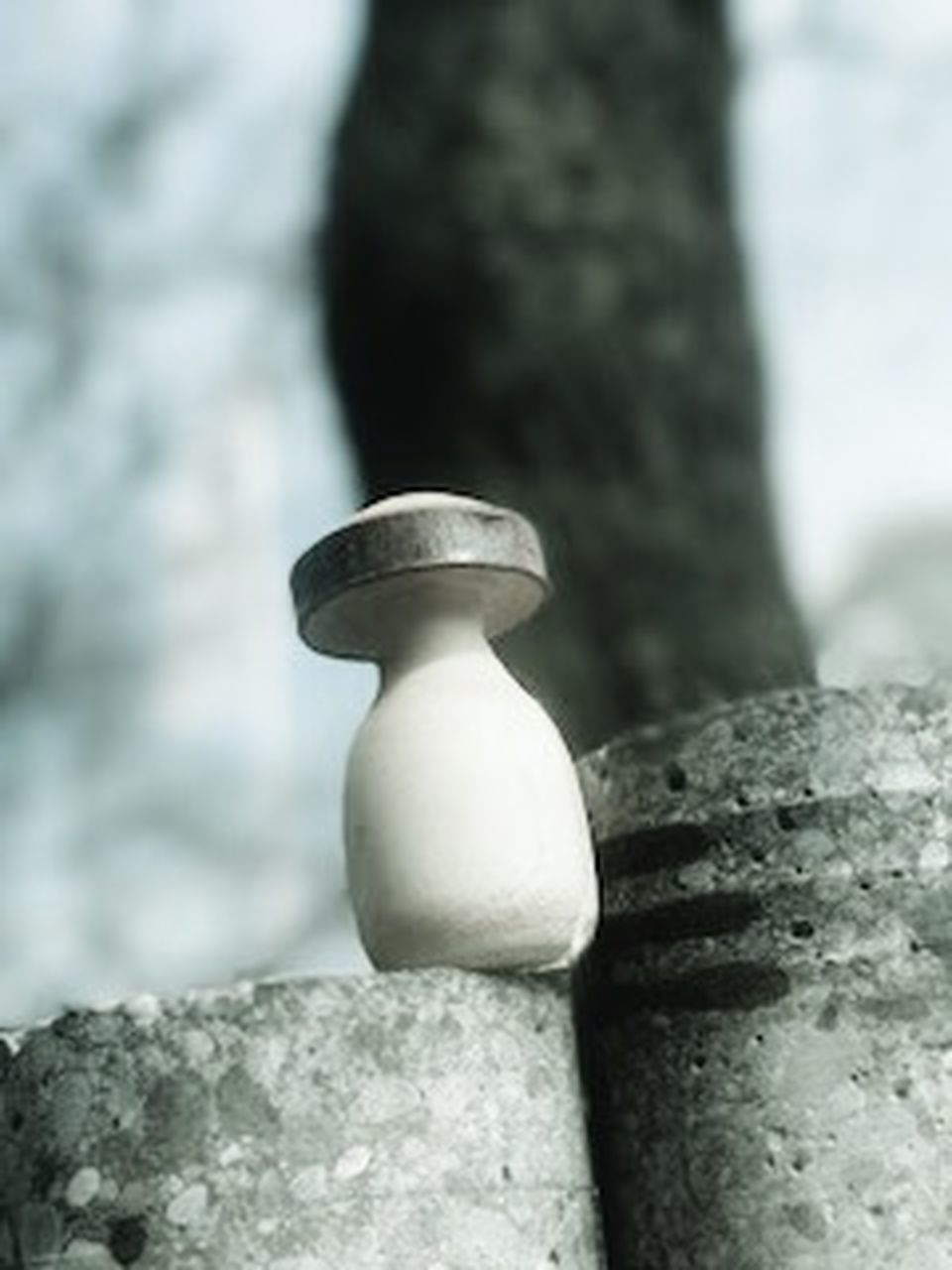 close-up, stone material, focus on foreground, marble, no people, skill, outdoors, day