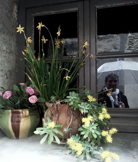 Architecture Bouquet Building Exterior Day Flower Flower Pot Flowers France LanguedocRoussillon Man Man In The Mirror One Person Plant Potted Plant Rain Rainy Days Samsung Galaxy S3 Scarf Selfie Street Photography Streetphotography ThatsMe White Umbrella Window