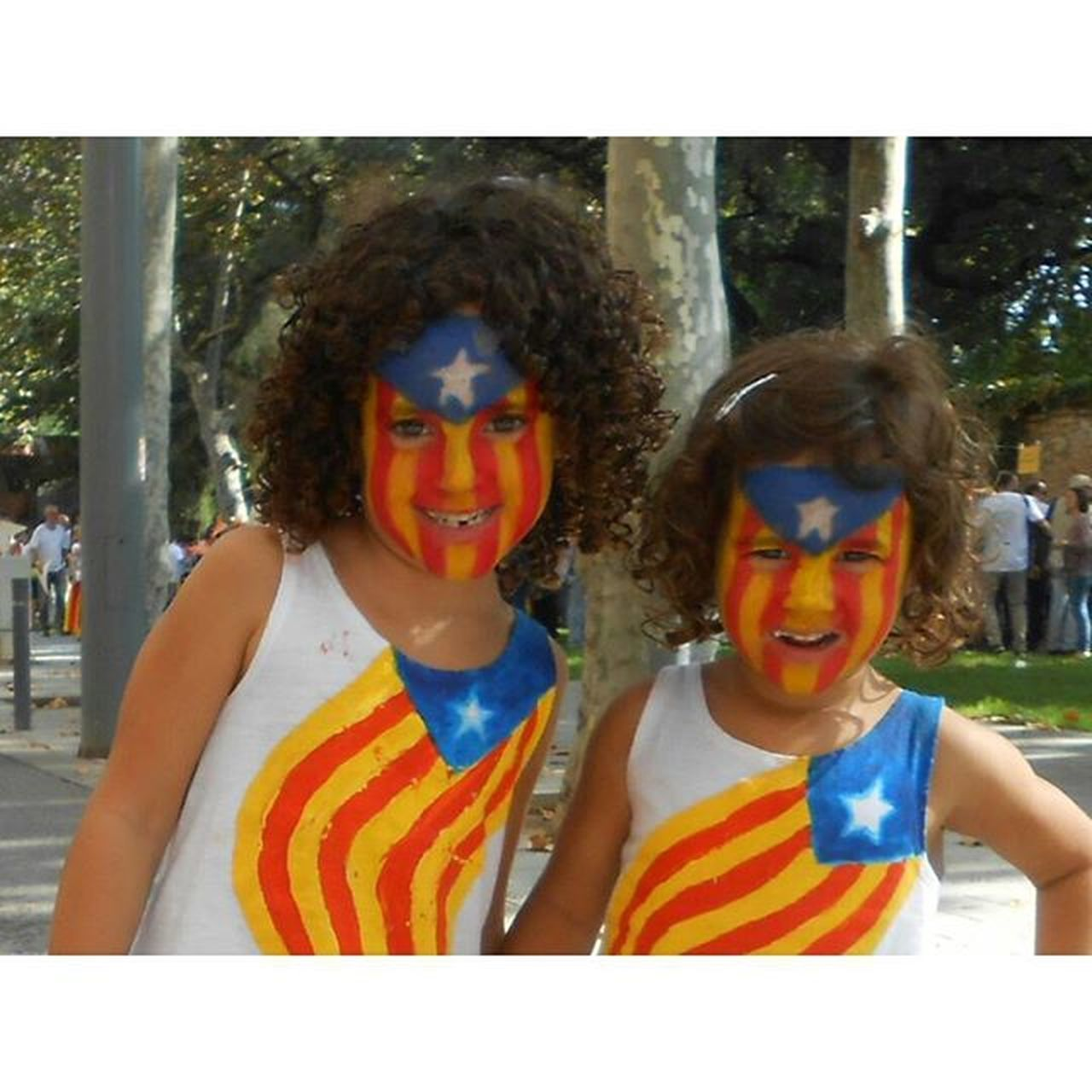 pictureTaken With The Accreditation ofinternational pressintheactof theDaySept. 11in Vialliureindependenceof Catalonia