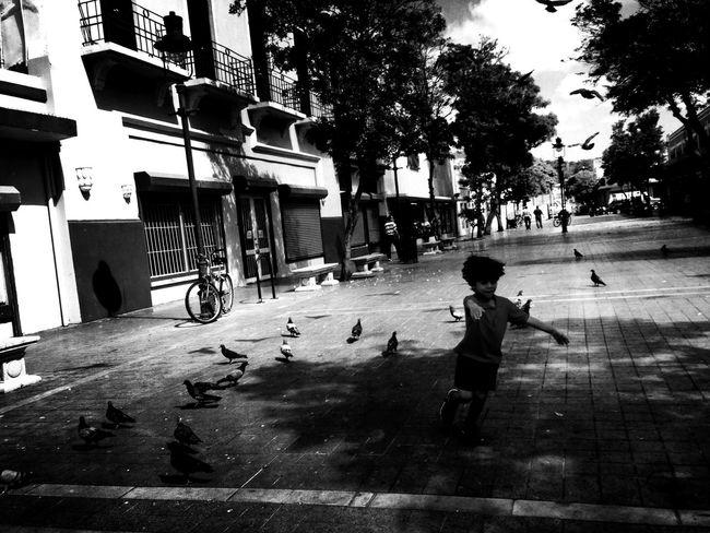 Blackandwhite NEM Black&white EyeEm Best Shots - Black + White Cityscapes Streetphoto_bw