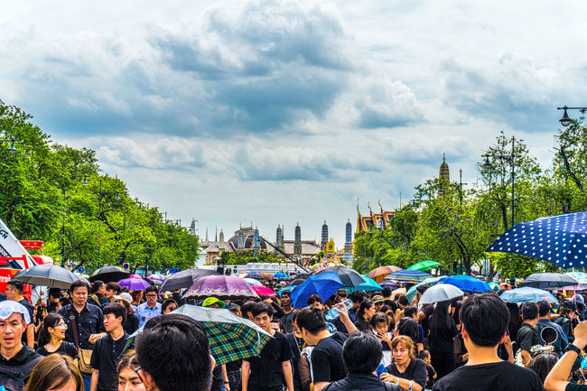 Crowds wait to sing the Royal Anthem in honour of HM King Bhumibol Adulyadej. Adult Bangkok City Crowd Day Horizontal King Bhumipol Adulyadet Large Group Of People Men Outdoors People Person Sky Thailand Tree