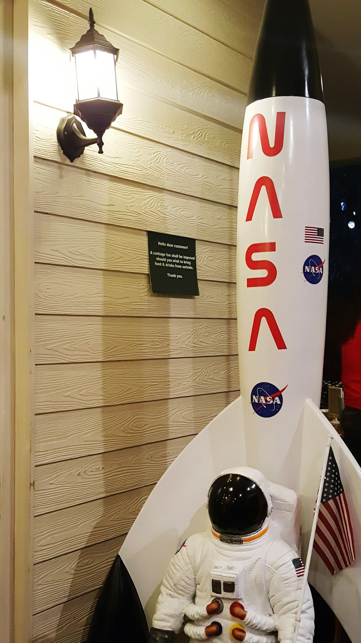 N.A.S.A by The Porch 🚀🚀🚀 Nasa AstronautProject 365 90/365
