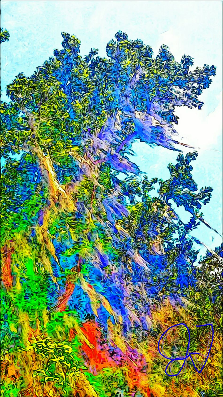 """Hanging Moss Tree2"" Artphotography Art Photography Colorful Colourful Colors Color Spanishmosstree Tropical ManyColors Effect Bluesky Clouds Hangingmosstree2"