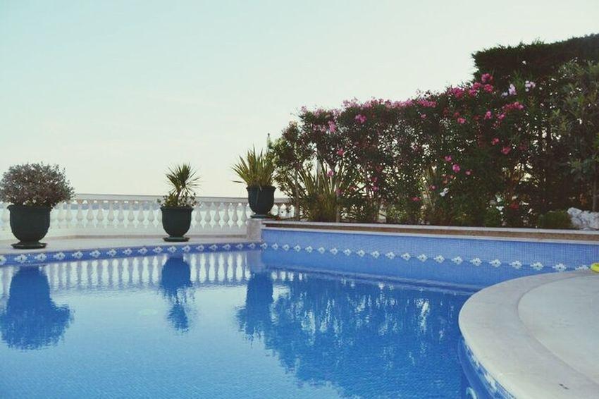 Summer Pool Blue