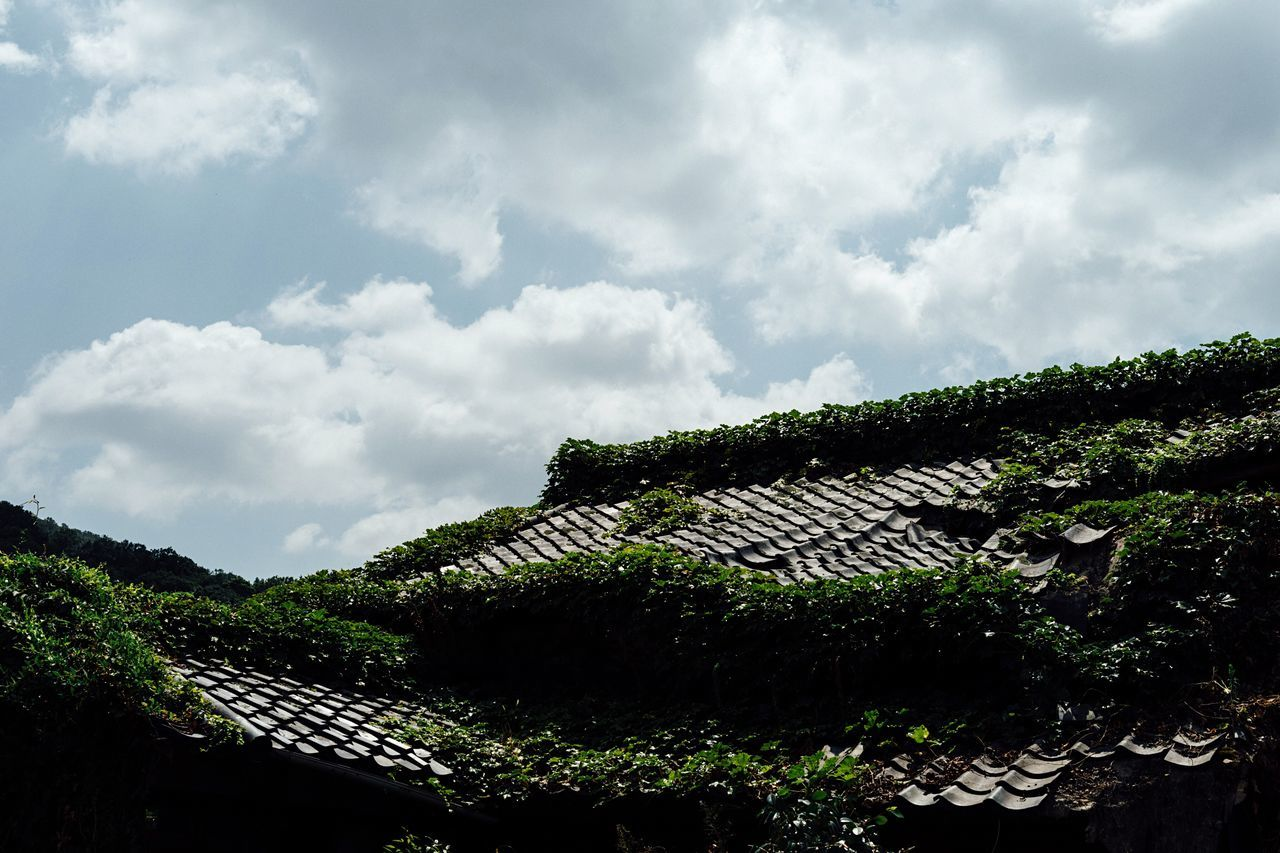 Green Roof Old House Japanese House Covered Covered In Green Summer Sky  Summer Sky And Clouds Hotday Growth Green Color House Sky Clouds And Sky Nara Nara,Japan Japan Photography Enjoying Life Atomosphere Capture The Moment Nature Travel