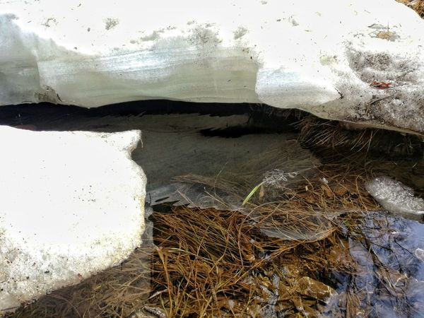 Beach Water Window No People Textured  Nature Day Indoors  Sea Close-up Sky Snow And Ice  Snow And Ice  River Water Flow Water Reflection Water And Snow Snow And Water Creek Creeks Creekside Water Flows Water Flowing Gently Clear Water Clear Waters