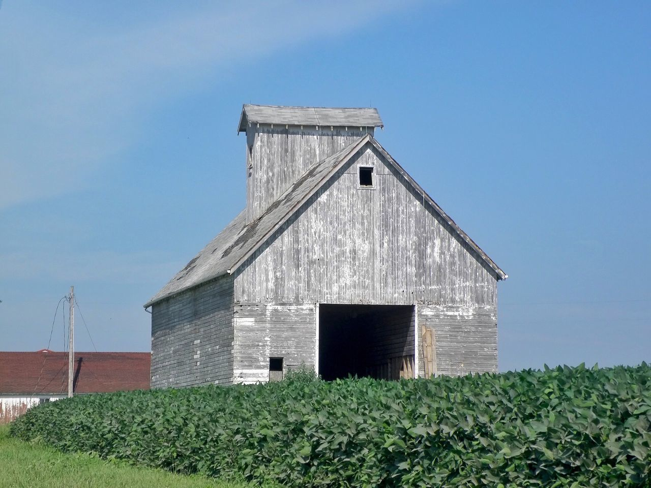 Hoosier Barn Architecture Barn Blue Built Structure Cloud Day Exterior Field Grass Grassy Green Color Growth Indiana Landscape Low Angle View Nature No People Outdoors Plant Rural Scene Sky Tranquil Scene Tranquility