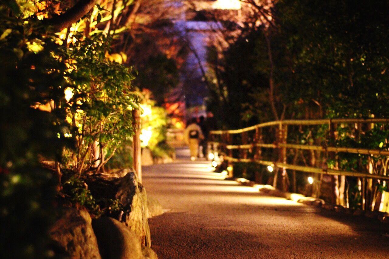 Japanese Garden Tokyo Japan Kimono