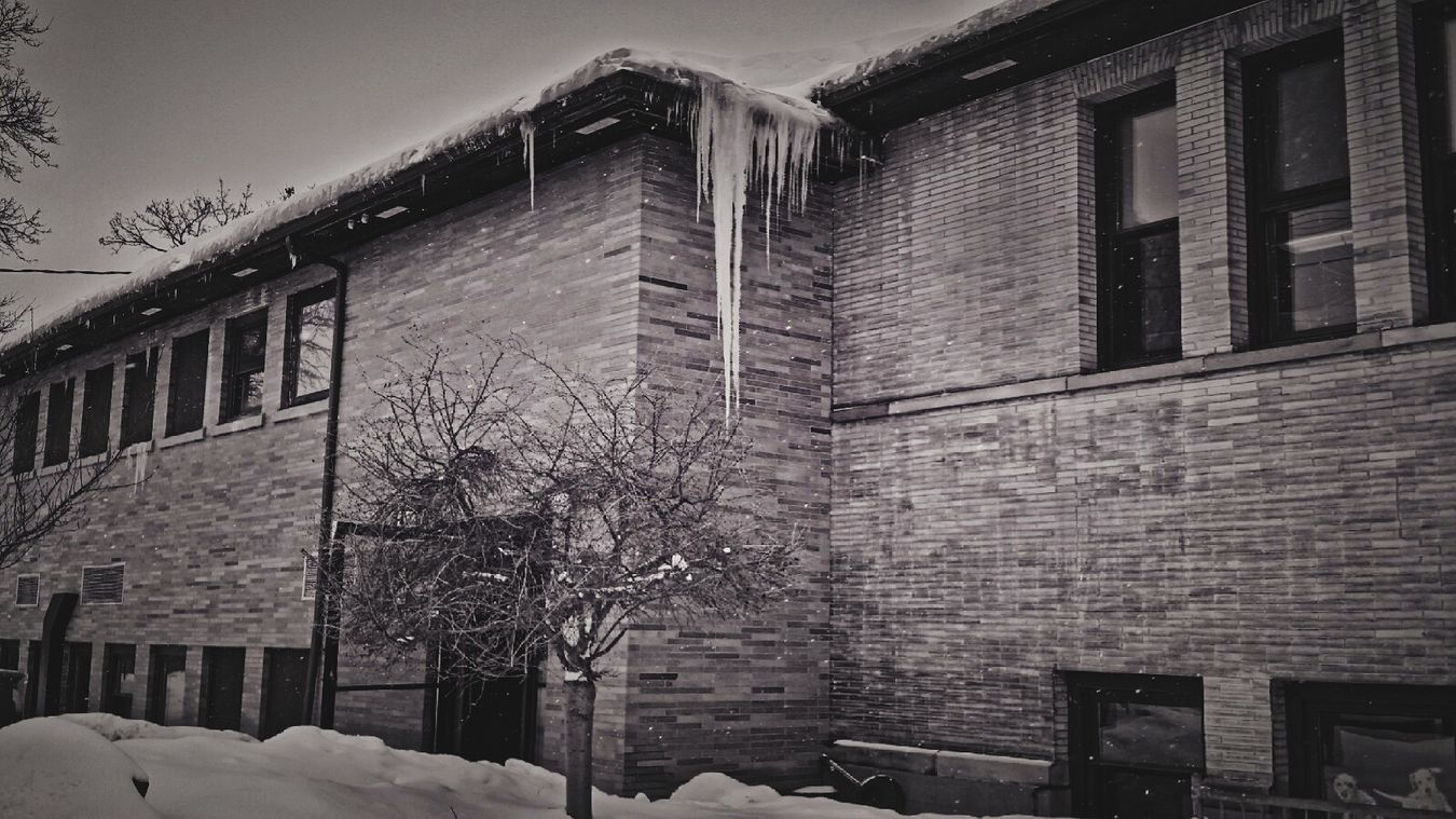 Monochrome HDR Library Winter Wonderland