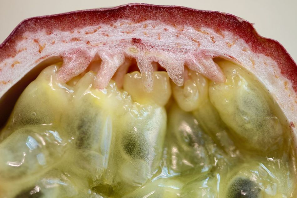 Fruit Macro Frucht Passionfruit Maracujá Maracuya Exotic Passionsfrucht Fruits Maracujá