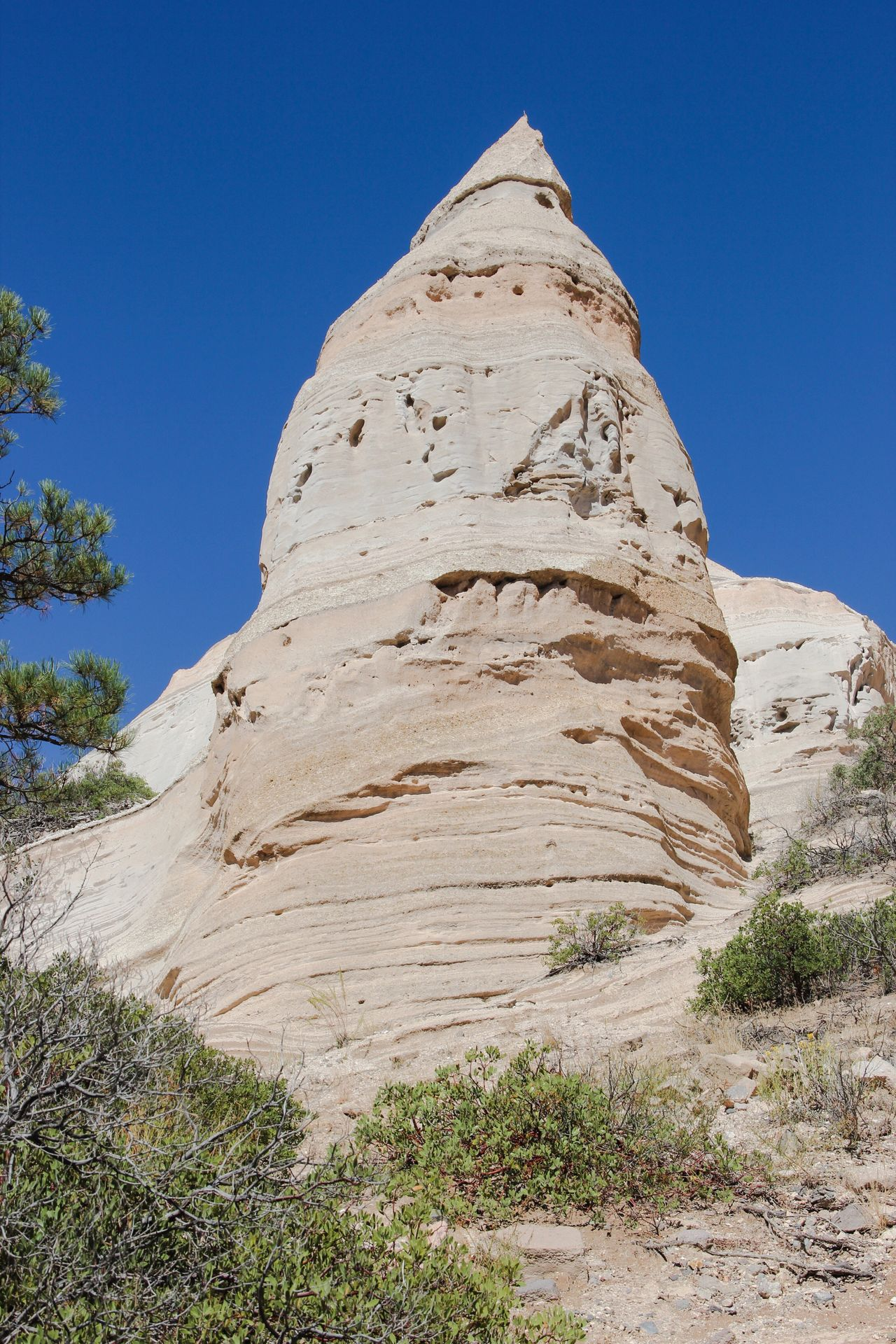 Clear Sky Low Angle View Blue Travel Destinations Famous Place Tree Tourism Tranquil Scene International Landmark Scenics Tranquility Outdoors Rock Formation Physical Geography Day Nature Beauty In Nature Mountain Peak Eroded Sunny Kasha-Katuwe Tent Rocks National Monument No People Beauty In Nature Countryside