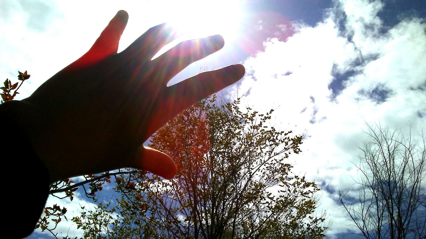 Cloud - Sky Outdoors Sunshine Reaching For The Sky Reaching For The Impossible Day Human Body Part Young Adult Dreamer Adults Only