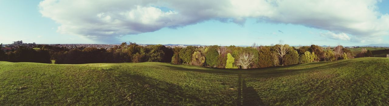 Tommins Hill Hamilton Landscape panorama Panorama