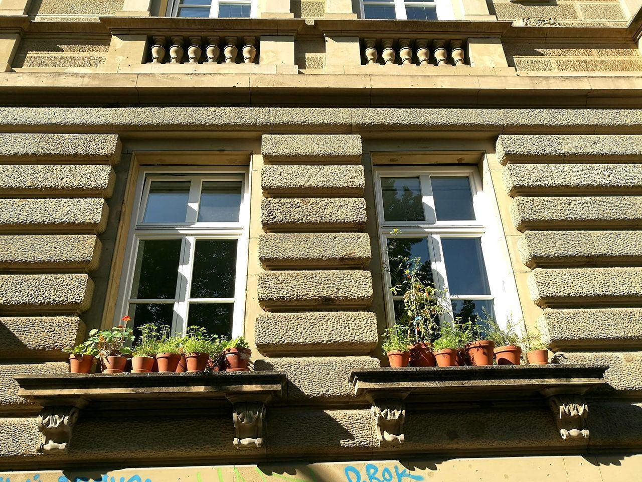 Art nouveau House and plants in Stuttgart. Art Nouveau Art Nouveau Architecture Art Nouveau Buildings Stuttgartmobilephotographers Stuttgart
