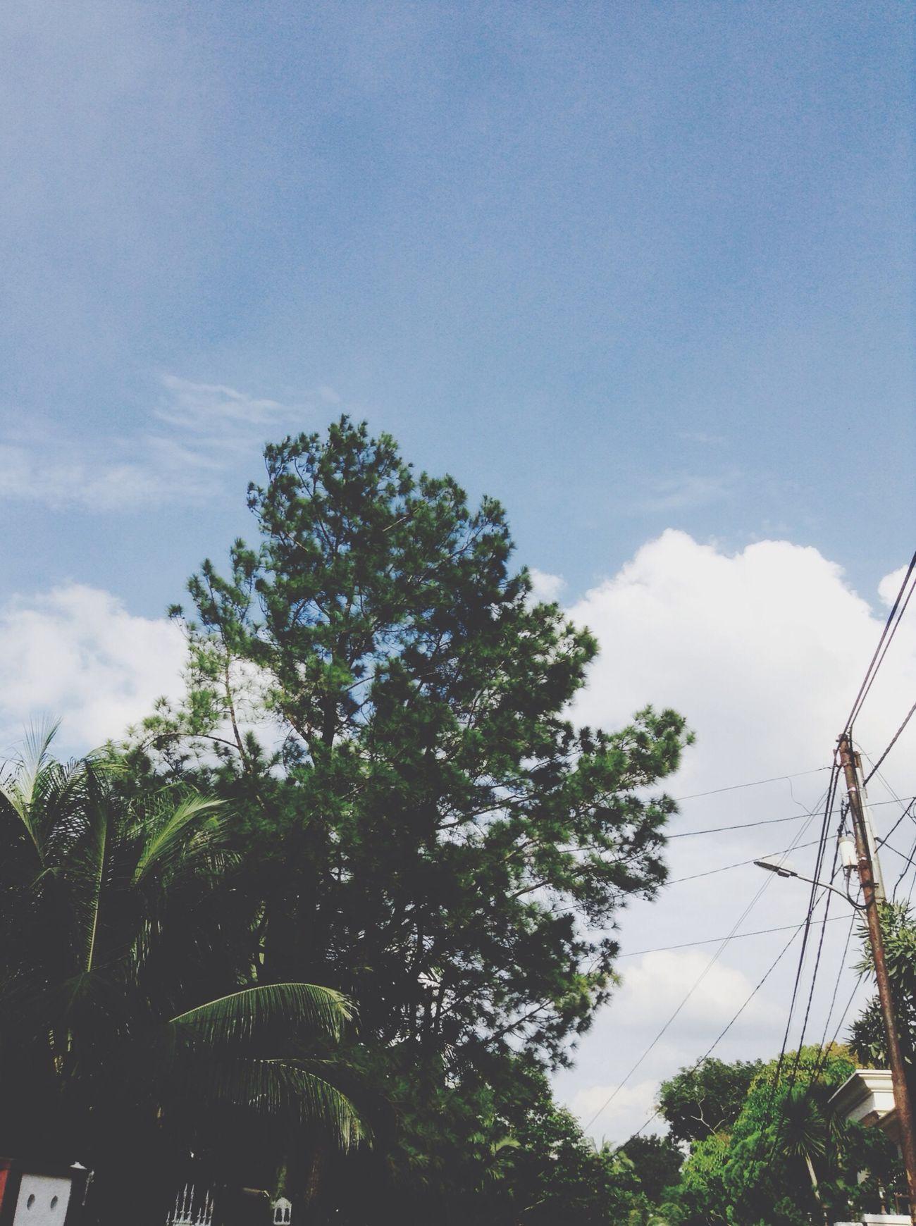 Langit sore ini