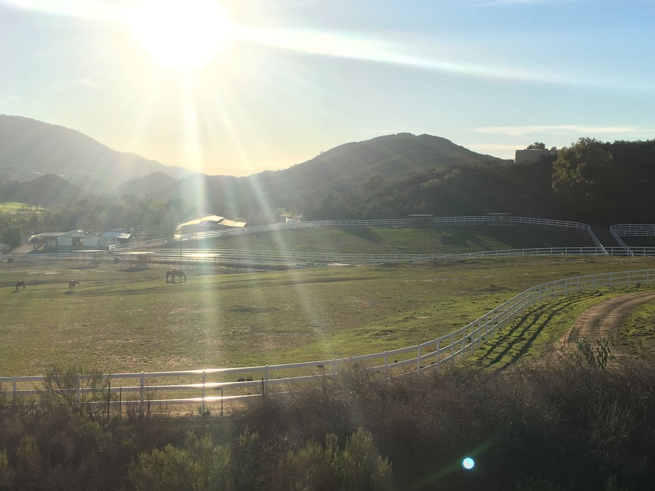 Beauty In Nature Lens Flare Sunlight Nature Sunbeam Mountain Sun Landscape Tranquility Scenics Tree Outdoors Mountain Range No People Day Horse Farm Farm Life Pasture Idyllic Countryside Country Life Country Road Picket Fence Stable