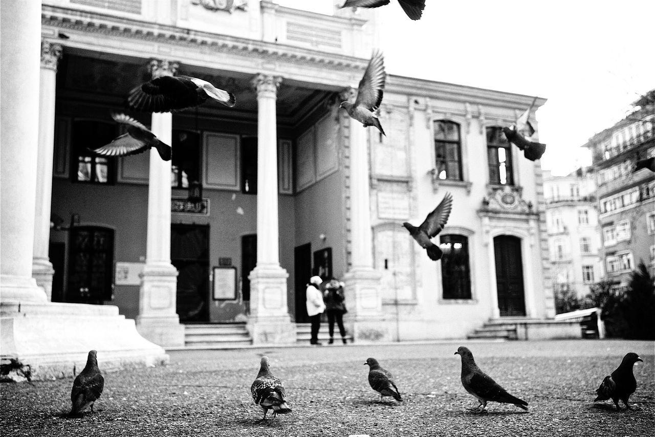 Turkey. Streetphotography Leicacamera