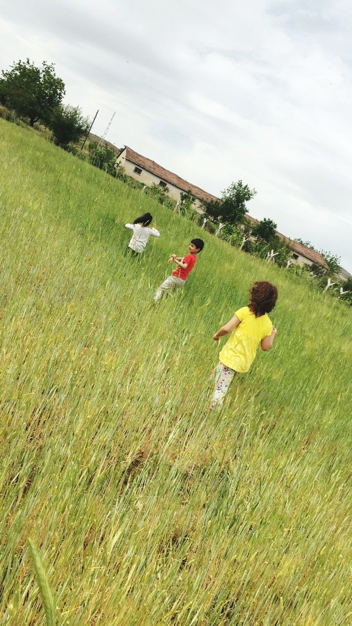 grass, field, growth, real people, nature, agriculture, day, working, landscape, sky, outdoors, green color, men, rural scene, beauty in nature, scarecrow, tree, occupation, women, togetherness, mammal, people