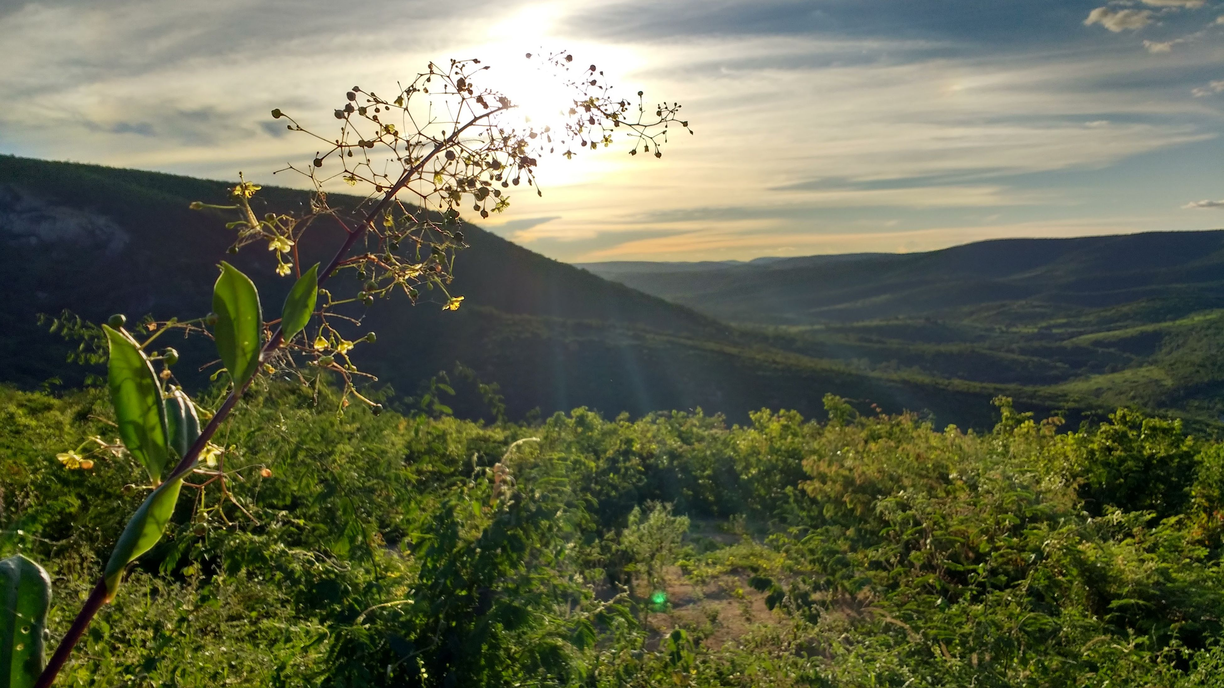 nature, mountain, beauty in nature, scenics, tranquility, tranquil scene, growth, no people, landscape, sky, plant, outdoors, day, sunset, tree