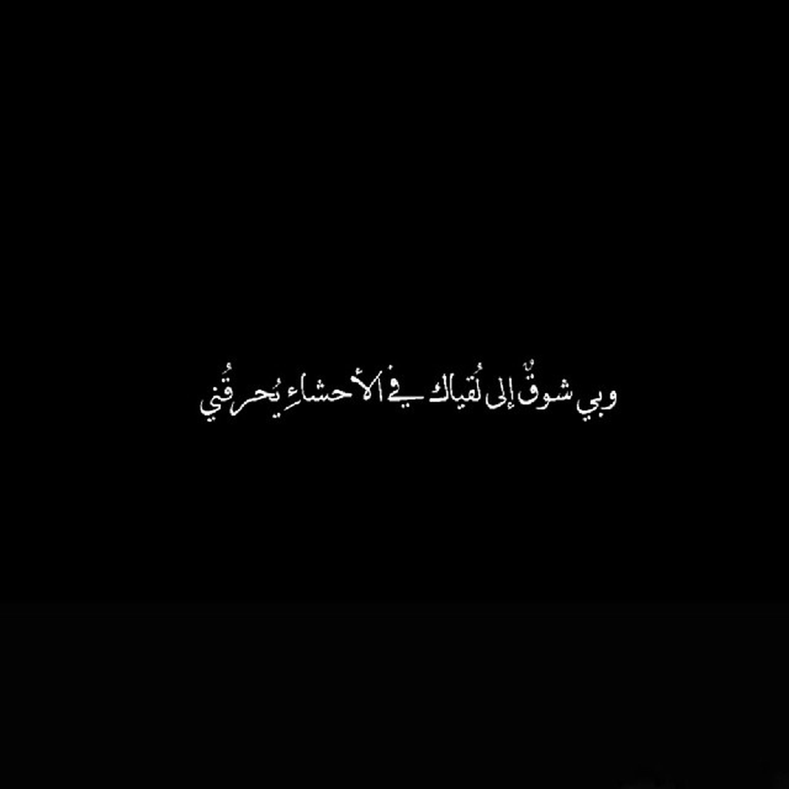 copy space, night, text, black background, western script, studio shot, dark, clear sky, communication, no people, low angle view, outdoors, tree, nature, silhouette, growth, black color, illuminated, close-up, plant