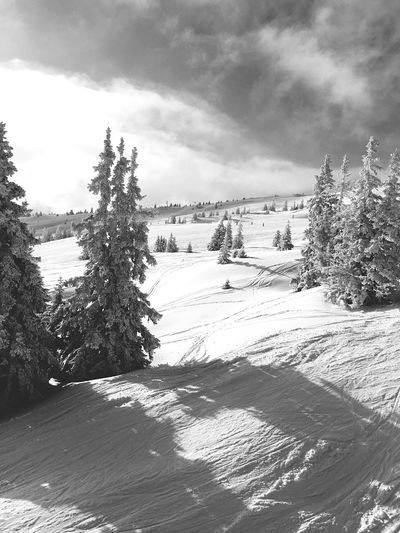 Winter Ski Sun Cold Blackandwhite France Mountains Beautiful Snow ❄️🎿☀️🇫🇷