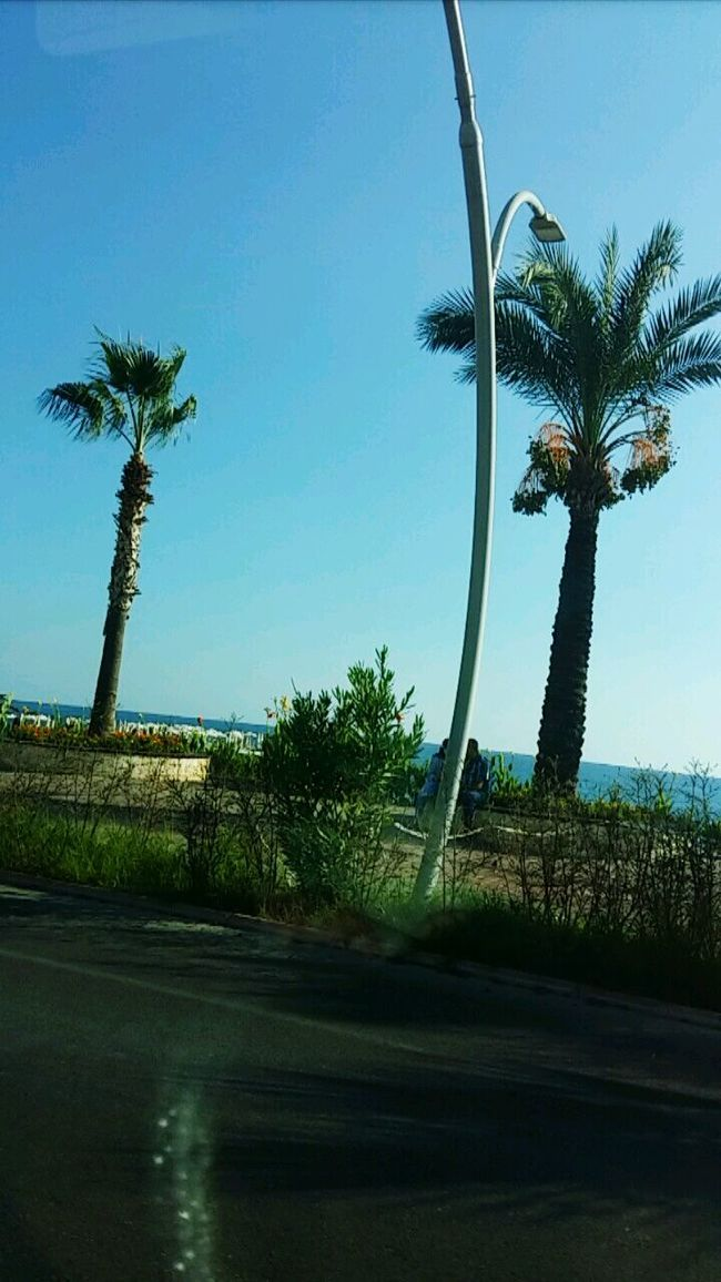 Turkey Ozean